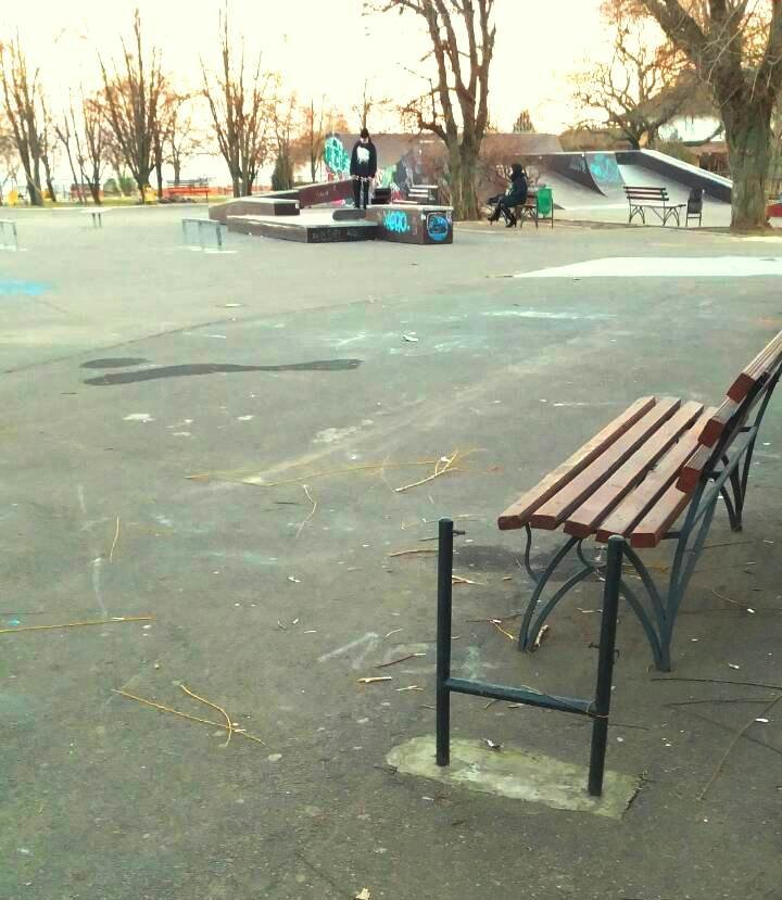 Клептоманы и вандалы: как черноморцы поздравили «Зеленхоз» с Новым годом, фото-1