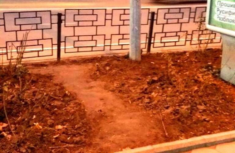 Клептоманы и вандалы: как черноморцы поздравили «Зеленхоз» с Новым годом, фото-10
