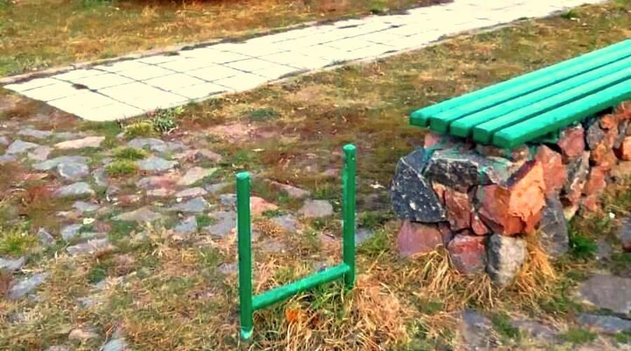 Клептоманы и вандалы: как черноморцы поздравили «Зеленхоз» с Новым годом, фото-5