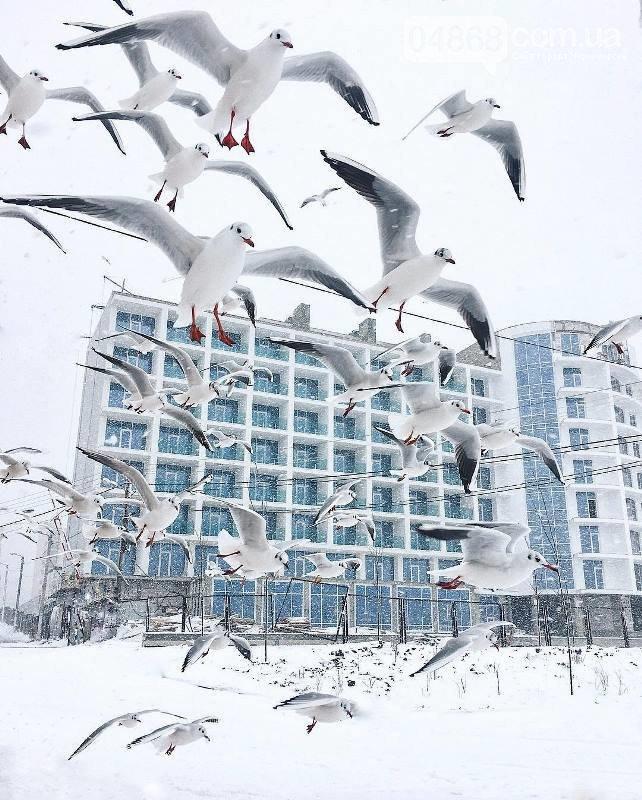 Крещенские купания в Черноморске: всё о том, где они будут проходить, фото-1