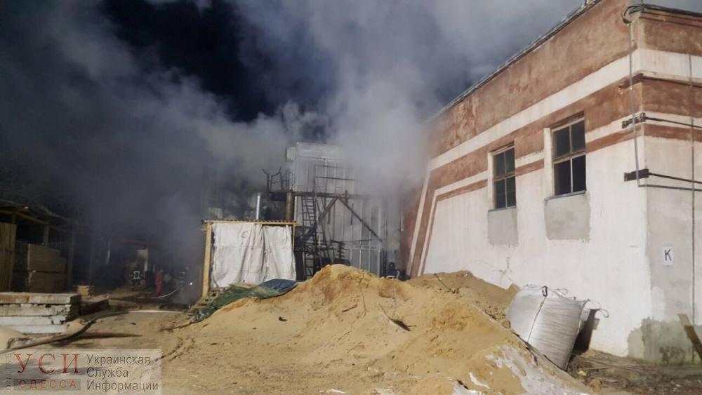Под Черноморском при пожаре погиб 61-летний мужчина, фото-2