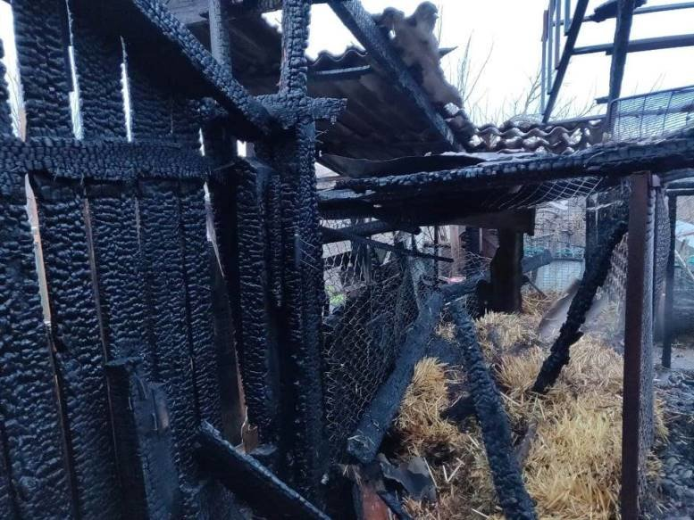 Черноморские спасатели тушили огонь в Молодёжном, фото-4