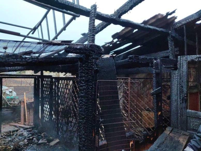 Черноморские спасатели тушили огонь в Молодёжном, фото-2