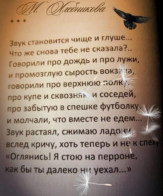 С Днём поэзии, Черноморск!, фото-11