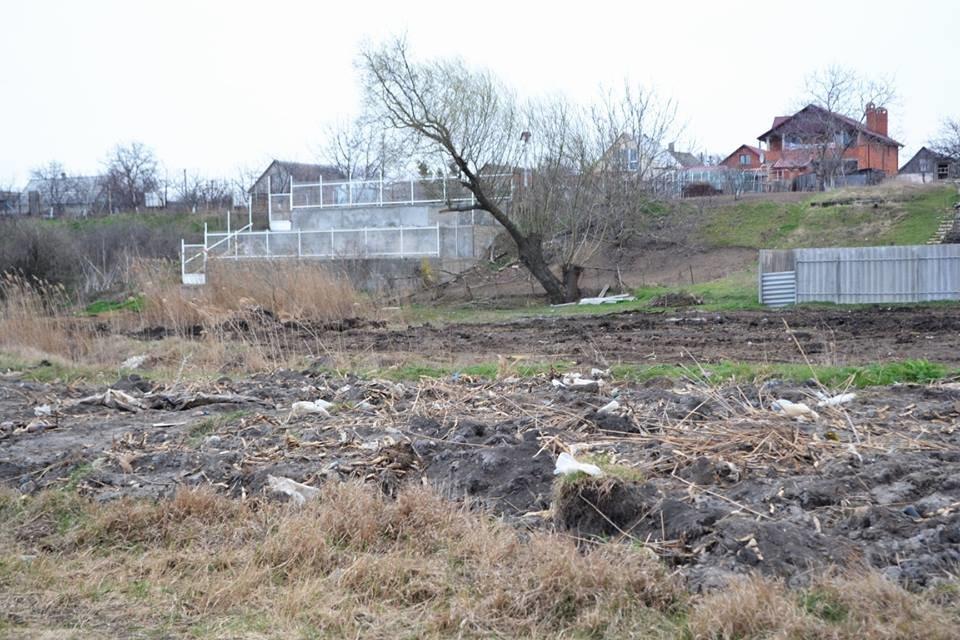Все желающие могут поучаствовать в посадке деревьев в Малодолинском, фото-4