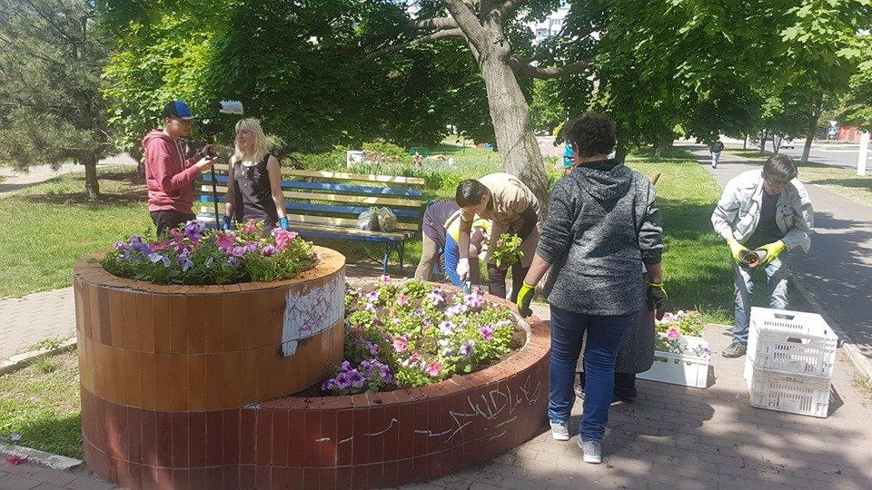 В Черноморске высаживают летние растения, фото-1
