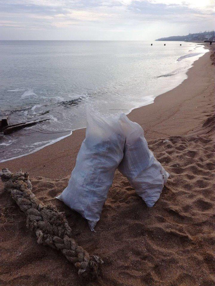 Молодежная инициатива: на побережье Черноморска прошёл субботник, фото-1