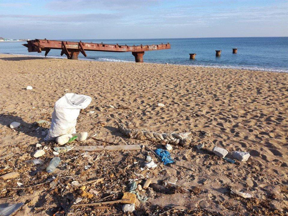 Молодежная инициатива: на побережье Черноморска прошёл субботник, фото-2