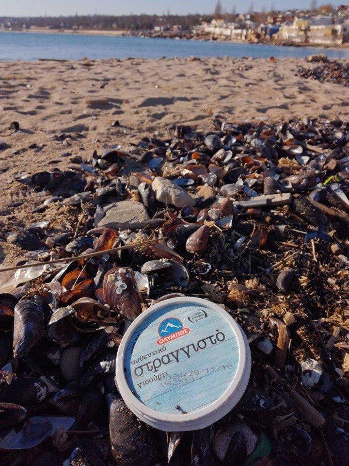 Молодежная инициатива: на побережье Черноморска прошёл субботник, фото-6
