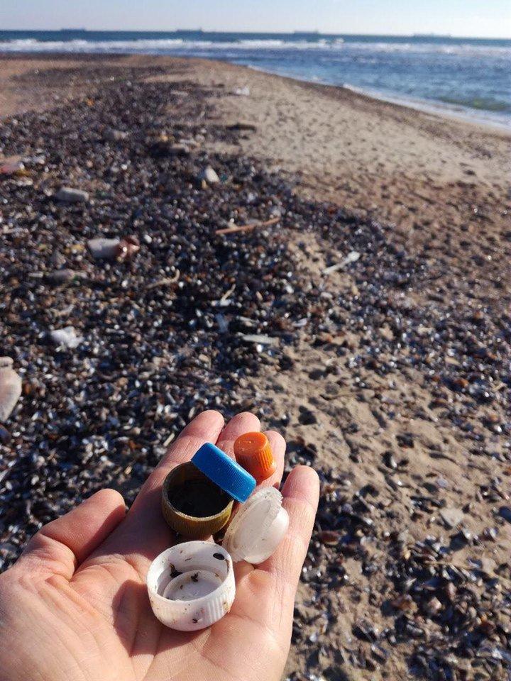 Молодежная инициатива: на побережье Черноморска прошёл субботник, фото-7