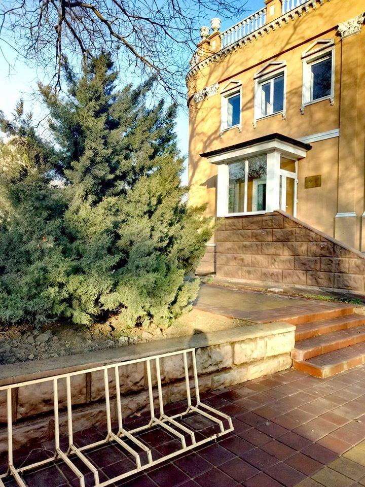 В Детской школе искусств Черноморска завершена реконструкция входа, фото-1
