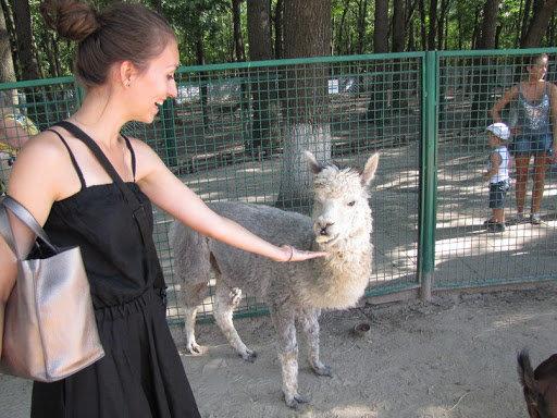 Погладить животных и пообщаться с живой природой: в Одесской области откроют экопарк, фото-1