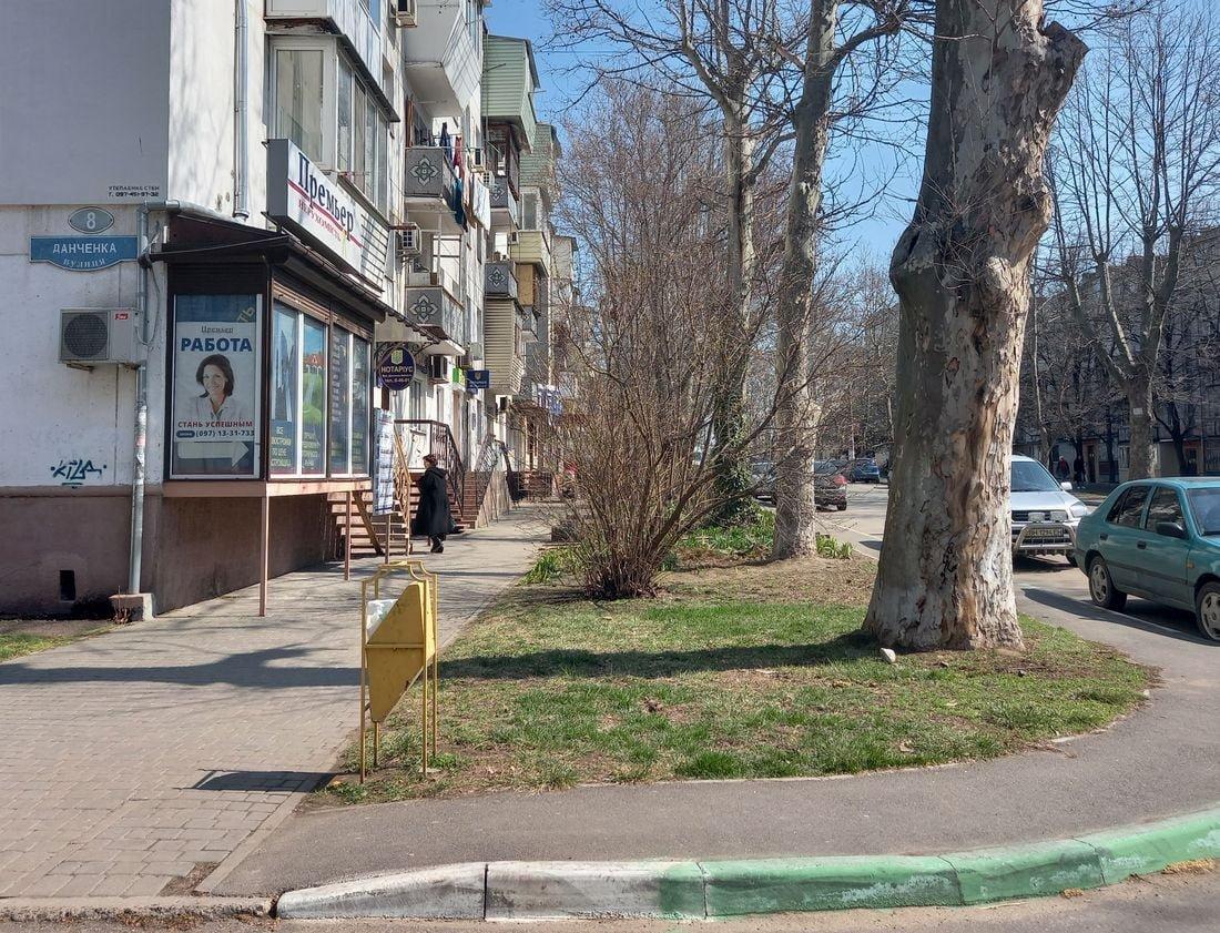 Экологи Черноморска высадили ирисы и форзиции, фото-4