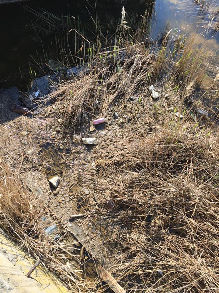 Под Черноморском очистили территорию от мусора, фото-3