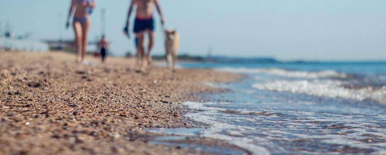 Городской пляж Черноморска к открытию сезона готов! (фото) | Новости